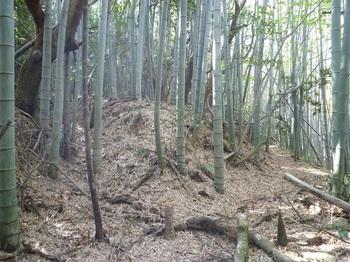 P1240416山道分岐②.JPG