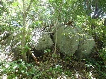 P1240484小岩が並ぶ小尾根分岐.JPG
