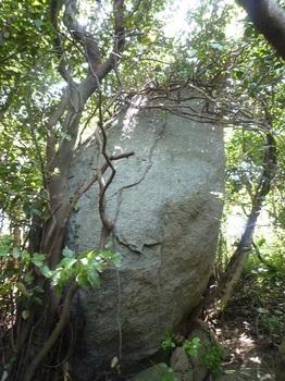 P1240497岩(5m).JPG