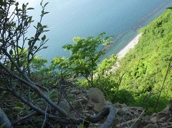 P1240733展望地から崖方向.JPG