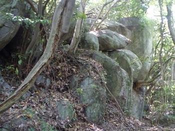 P1240781大岩.JPG