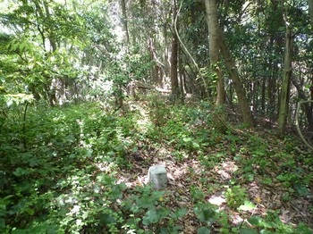 P1240850二等三角点「四代」・屋敷山山頂.JPG
