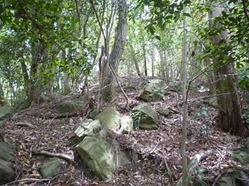 P1250169植林境・角張った石.JPG
