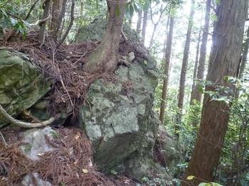 P1250193岩.JPG