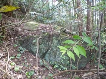 P1250194岩.JPG