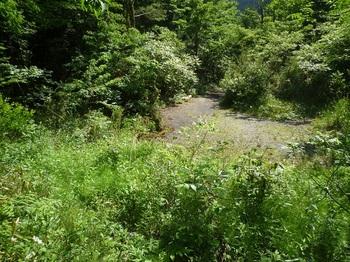 P1250266舗装林道終点部.JPG