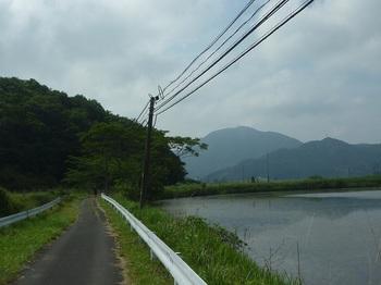 P1250292池沿いの舗装道・権現山・鞍掛山.JPG