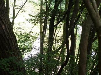 P1250401左下の谷に堰堤が見える.JPG