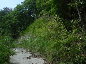 P1250404林道下降地点・林道終点(逆方向).JPG