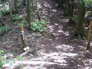 P1250520道標・大滝コース右へ.JPG
