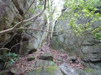 P1250656大岩の間を抜ける.JPG