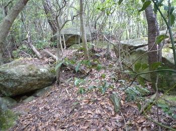 P1250667尾根上の岩(逆方向).JPG