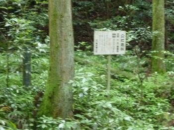 P1250717「公社造林大月事業地」.JPG
