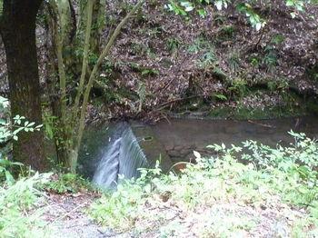 P1250991滝頂部の井堰.JPG