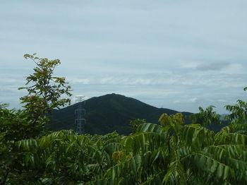 P1260186桂木山.JPG