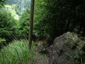 P1260365前方に鉄塔・岩が目立つ急勾配の尾根.JPG
