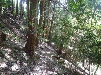 P1260380ガレ石の多い巡視路.JPG