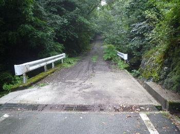 P1260410コン橋.JPG