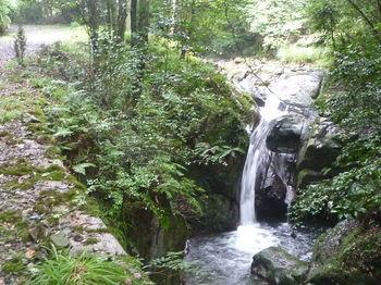 P1260412滝.JPG