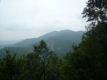 P1260661370mピークから堂ヶ岳.JPG