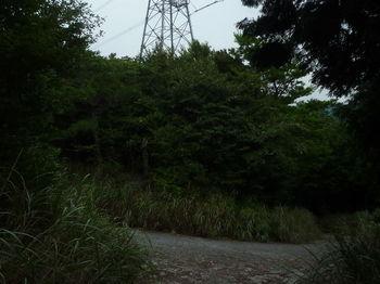 P1260727舗装管理道出合い.JPG