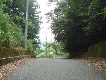 P1260748山中峠.JPG