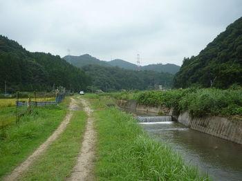 P1260908河川沿い.JPG