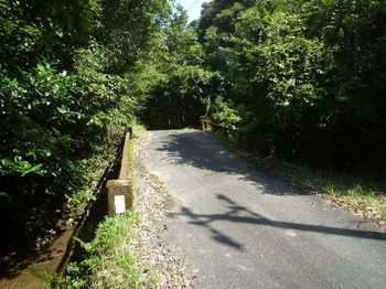 P1270123滝ノ上橋.JPG