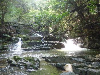 P1270127小滝.JPG