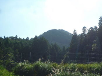 P1270154尻立山(北東麓から).JPG