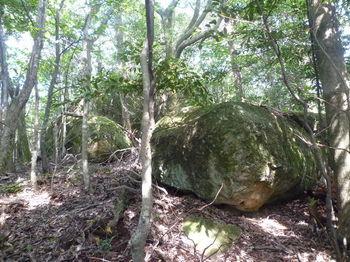 P1270446狼岩①.JPG