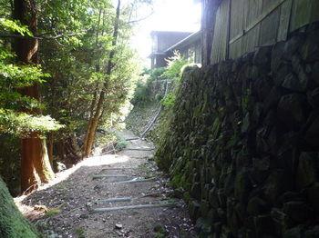 P1270530修禅寺石垣横の山道.JPG