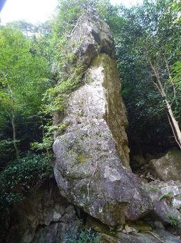 P1270721奥の院裏の直立した岩.JPG