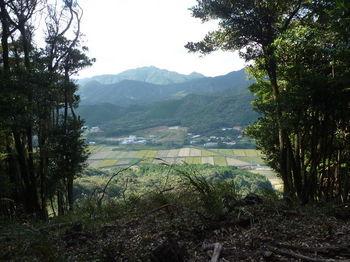P1270788伐採頂部から狩音山.JPG