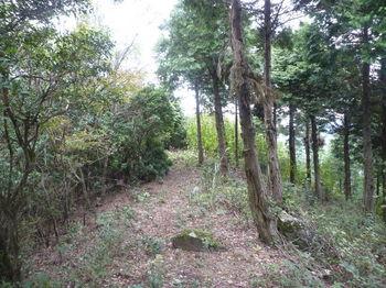 P1270853植林境.JPG