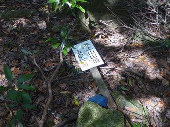P1270885山頂標識.JPG