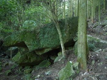 P1280065八丈岩(横).JPG