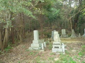 P1280213墓地・植林境尾根.JPG