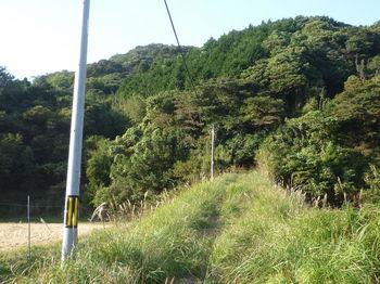 P1280384土手状の林道.JPG