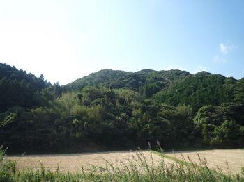 P1280446唐笠(大河内交流センター付近から).JPG