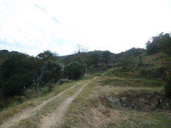 P1280475未舗装林道.JPG