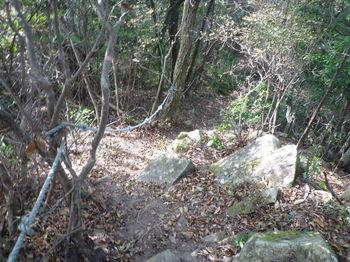 P1280523山頂からの下り・ロープ.JPG