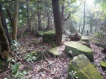 P1280790岩ヶ浴頭山頂.JPG