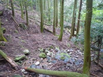 P1280821沢渡り・前方に八丈岩.JPG