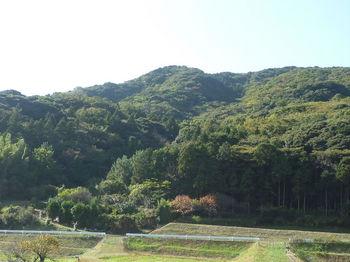 P1290012大笠山方向.JPG