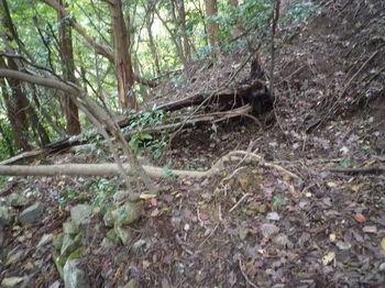 P1290055炭焼窯跡(横から).JPG