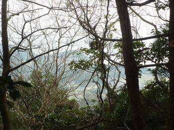 P1290062樹間に甲山・室津.JPG