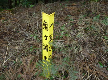 P1290081鬼ヶ城まで1500m.JPG