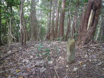 P1290134コン杭「クロ井村有」.JPG