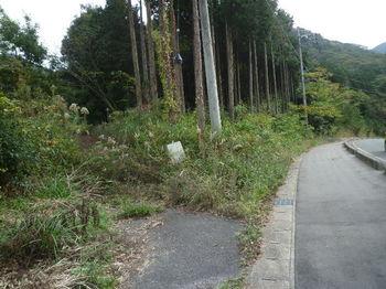 P1290156林道分岐(逆方向).JPG